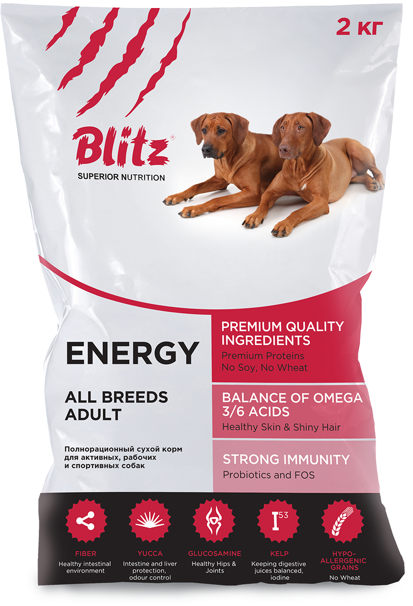 Blitz Adult All Breeds Energy