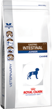 GASTRO INTESTINAL JUNIOR GIJ29